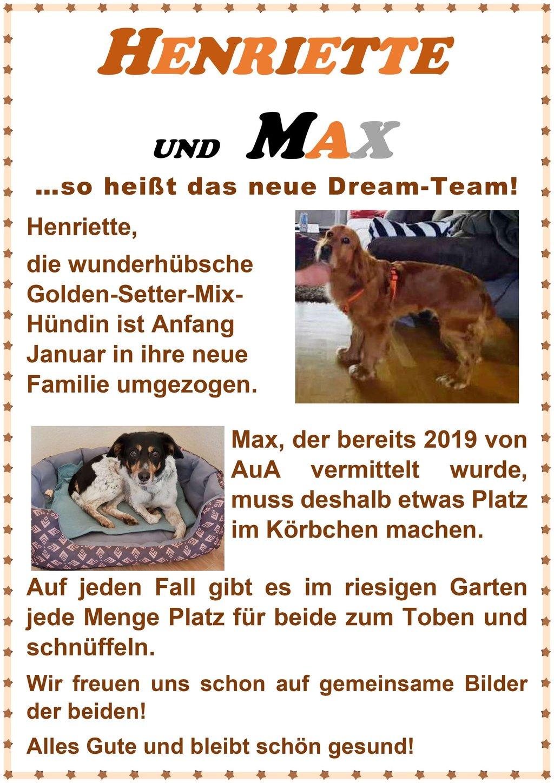 Erfolgsgeschichte von Hund Henriette