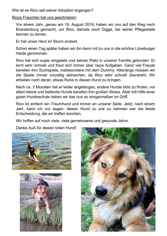 Erfolgsgeschichte von Hund Rico Teil 2